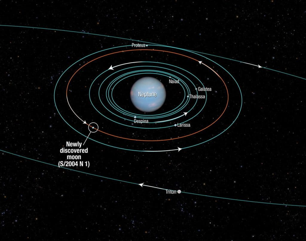 Neptün'ün Uyduları