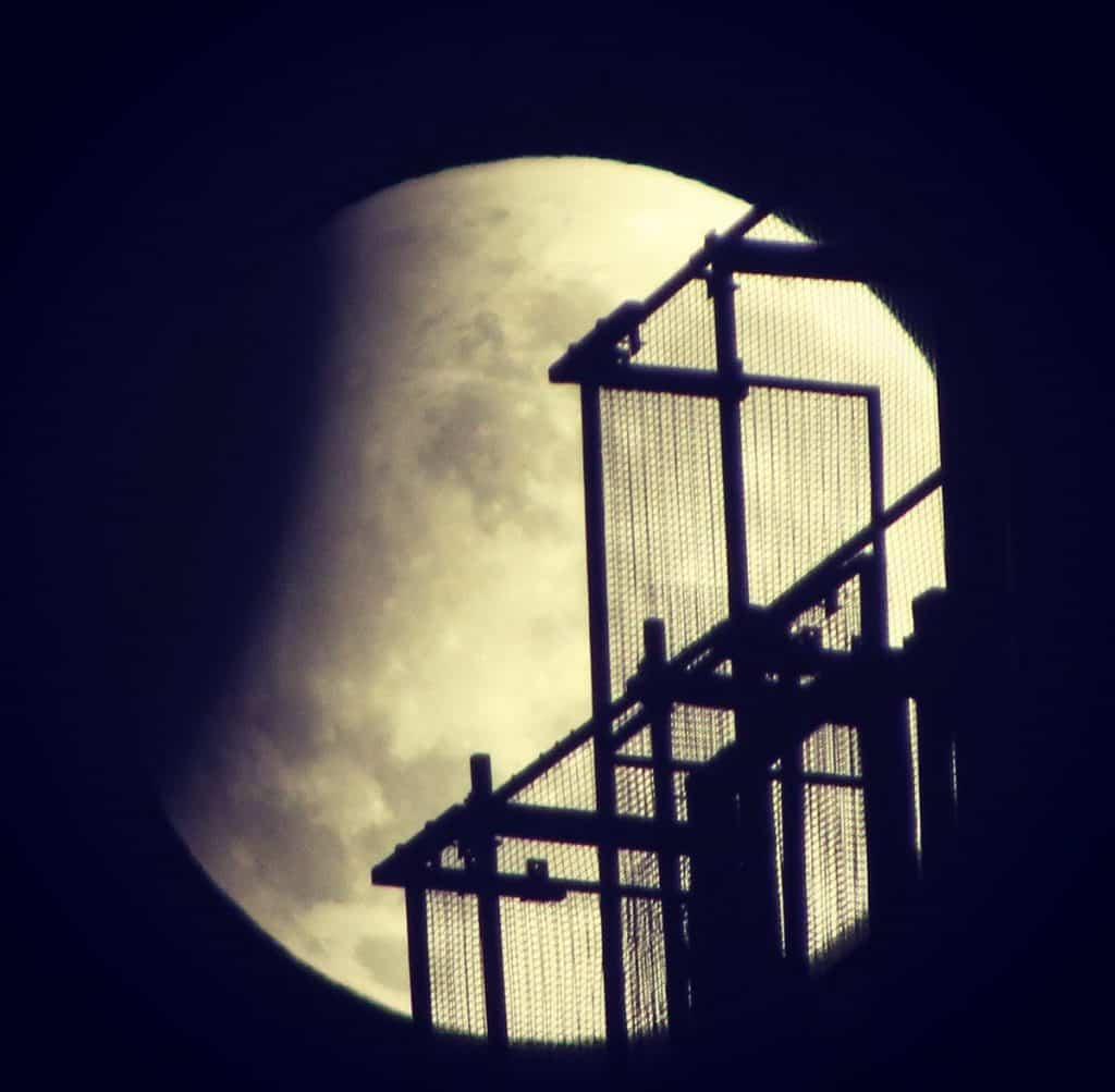 Ay Tutulması Fotoğrafı - 3
