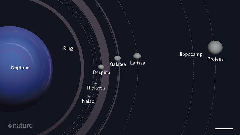 Neptün'ün Uyduları (İç yörünge)